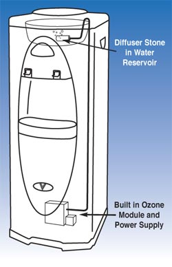 Bottleless water cooler ozone sanitizer